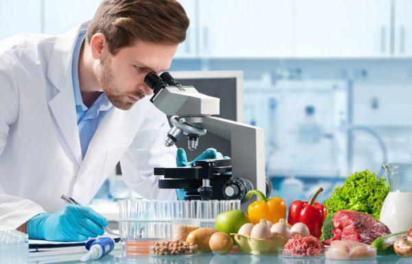 מה עושים עם תואר במדעי התזונה? המדריך המלא