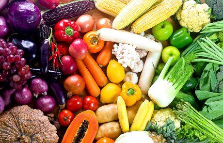 דיאטניות בחזית המלחמה בקורונה: כנס מיוחד בתחום מדעי התזונה