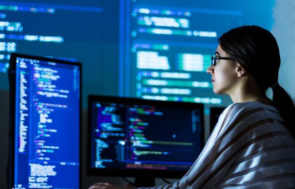 מערכות מידע ניהוליות: מונחון קריירה ומשרות